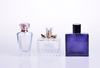 Custom Fashion Shaped Glass Perfume Bottle in set